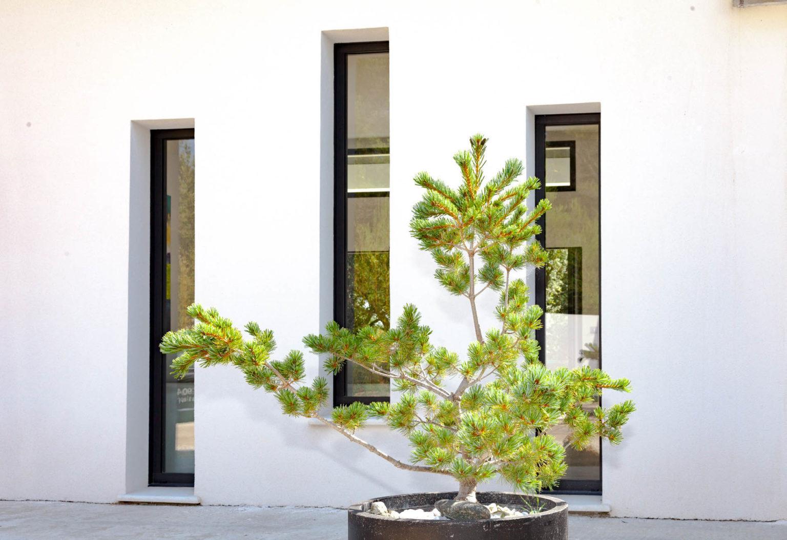 villa-contemporaine-hagakure-06